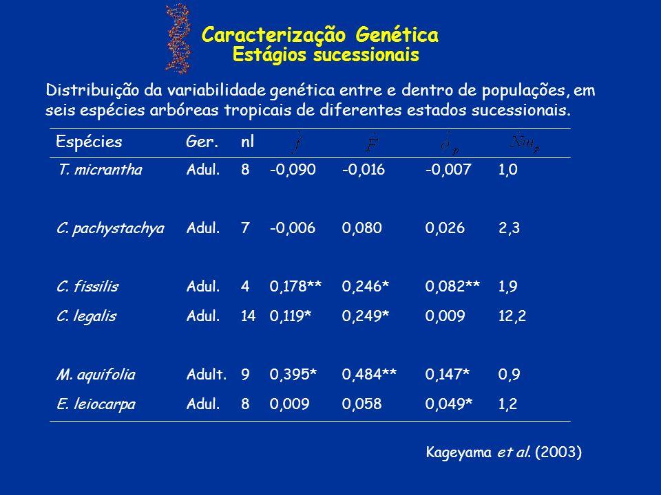 Caracterização Genética Estágios sucessionais 1,20,049*0,0580,0098Adul.E. leiocarpa 0,90,147*0,484**0,395*9Adult.M. aquifolia 12,20,0090,249*0,119*14A