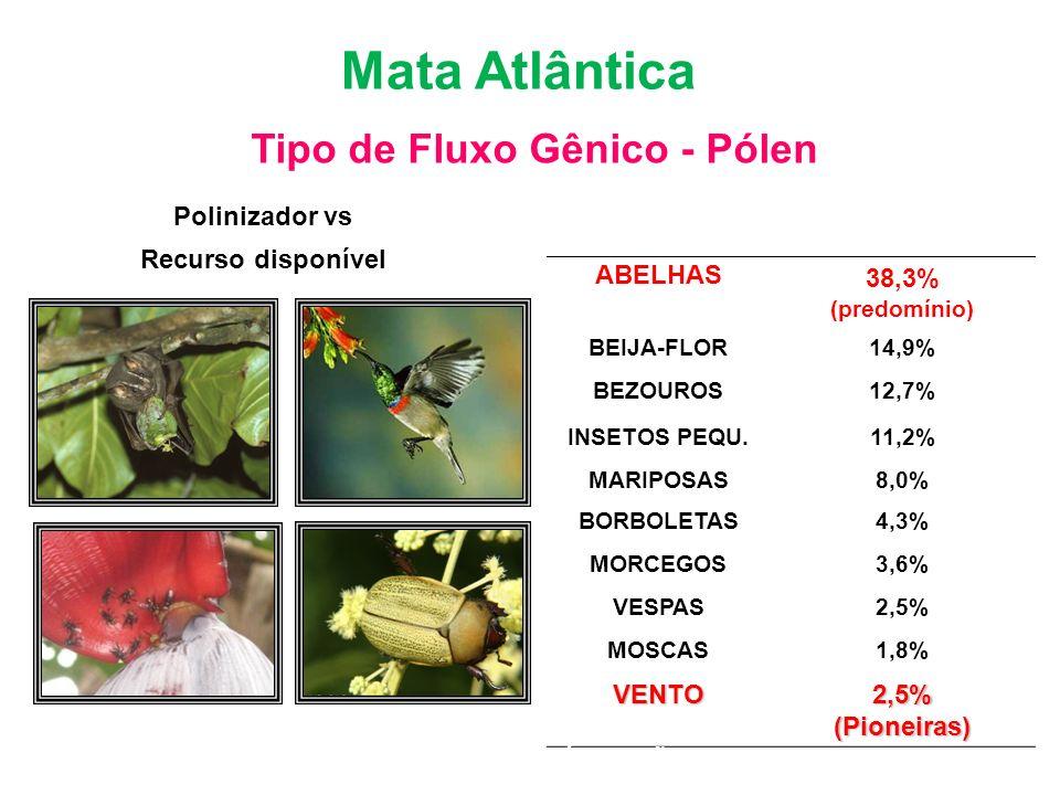 Polinizador vs Recurso disponível Bioma Mata Atlântica Tipo de Fluxo Gênico - Pólen Polinizadores de 276 espécies arbóreas da Floresta Tropical da C.