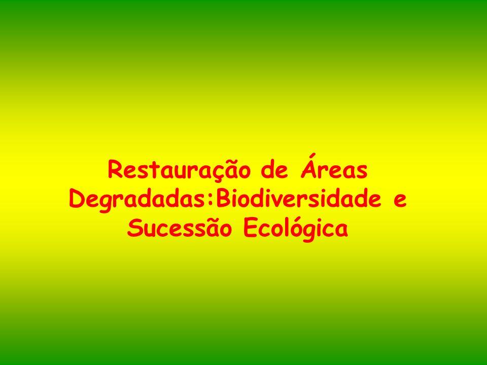 Restauração de Áreas Degradadas:Biodiversidade e Sucessão Ecológica