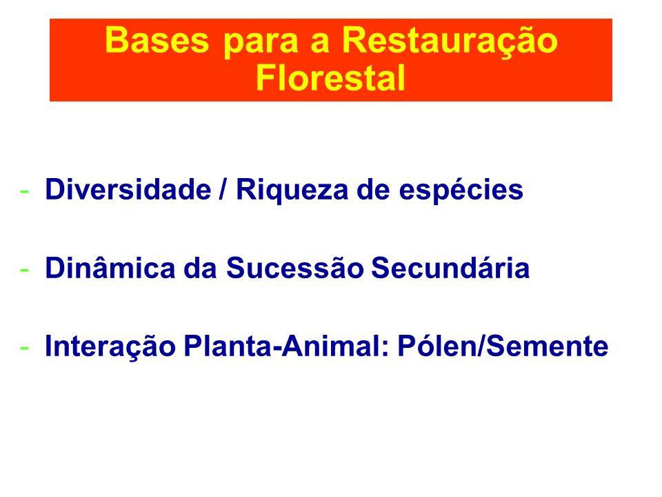 Bases para a Restauração Florestal -Diversidade / Riqueza de espécies -Dinâmica da Sucessão Secundária -Interação Planta-Animal: Pólen/Semente