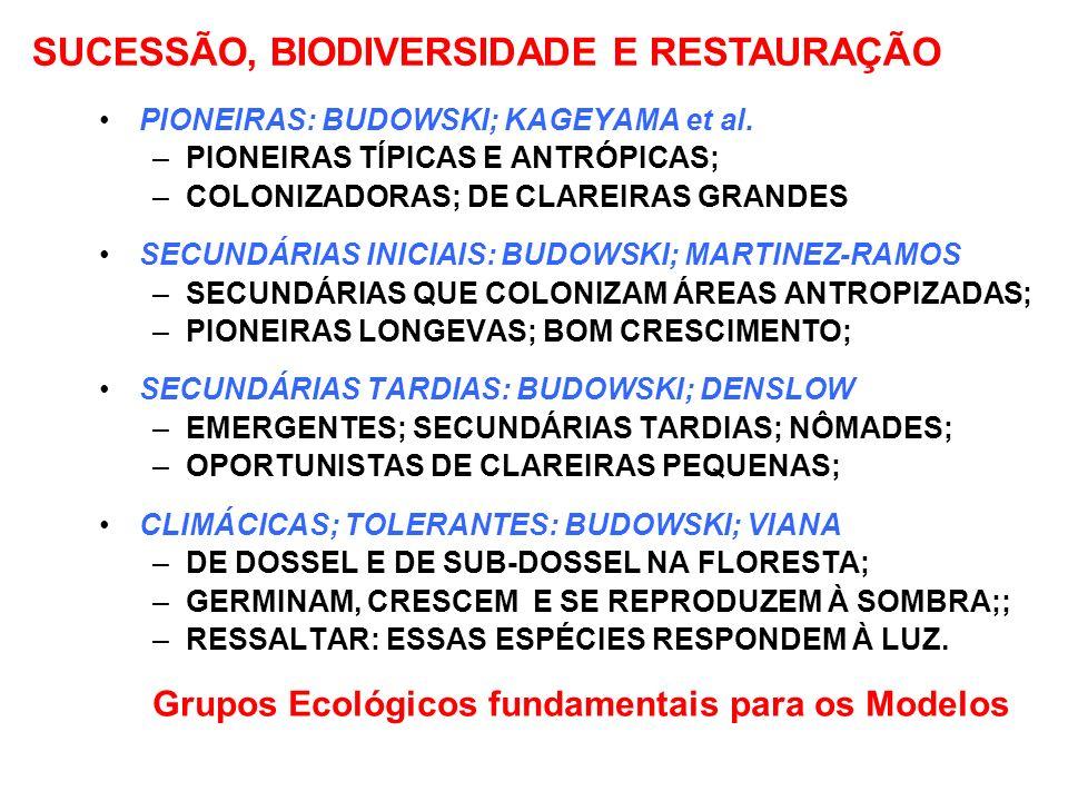 GRUPOS ECOLÓGICOS DE ESPÉCIES ARBÓREAS DA FLORESTA TROPICAL PIONEIRAS: BUDOWSKI; KAGEYAMA et al. –PIONEIRAS TÍPICAS E ANTRÓPICAS; –COLONIZADORAS; DE C