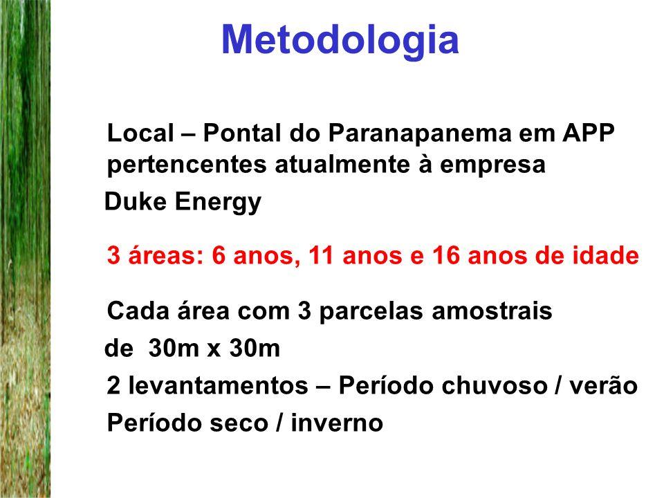 Metodologia Local – Pontal do Paranapanema em APP pertencentes atualmente à empresa Duke Energy 3 áreas: 6 anos, 11 anos e 16 anos de idade Cada área
