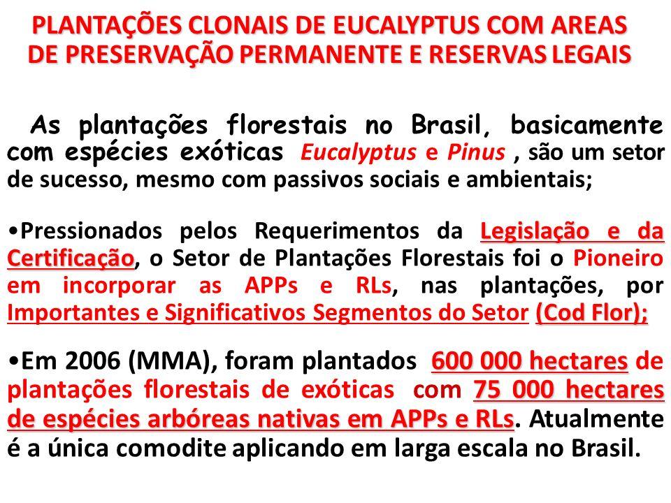 PLANTAÇÕES CLONAIS DE EUCALYPTUS COM AREAS DE PRESERVAÇÃO PERMANENTE E RESERVAS LEGAIS As plantações florestais no Brasil, basicamente com espécies ex