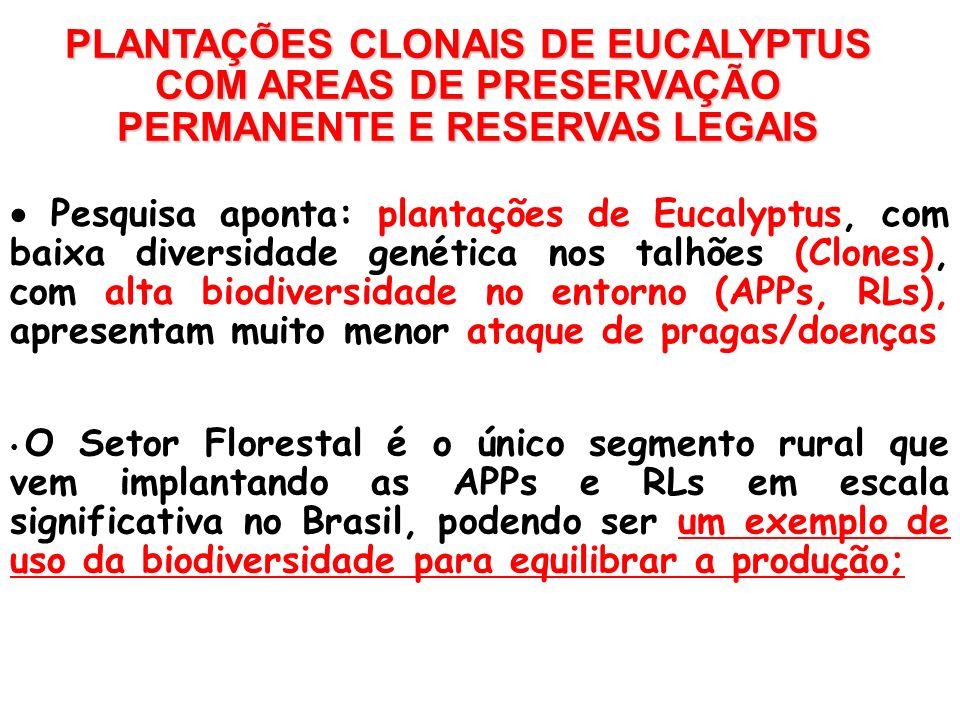 PLANTAÇÕES CLONAIS DE EUCALYPTUS COM AREAS DE PRESERVAÇÃO PERMANENTE E RESERVAS LEGAIS Pesquisa aponta: plantações de Eucalyptus, com baixa diversidad
