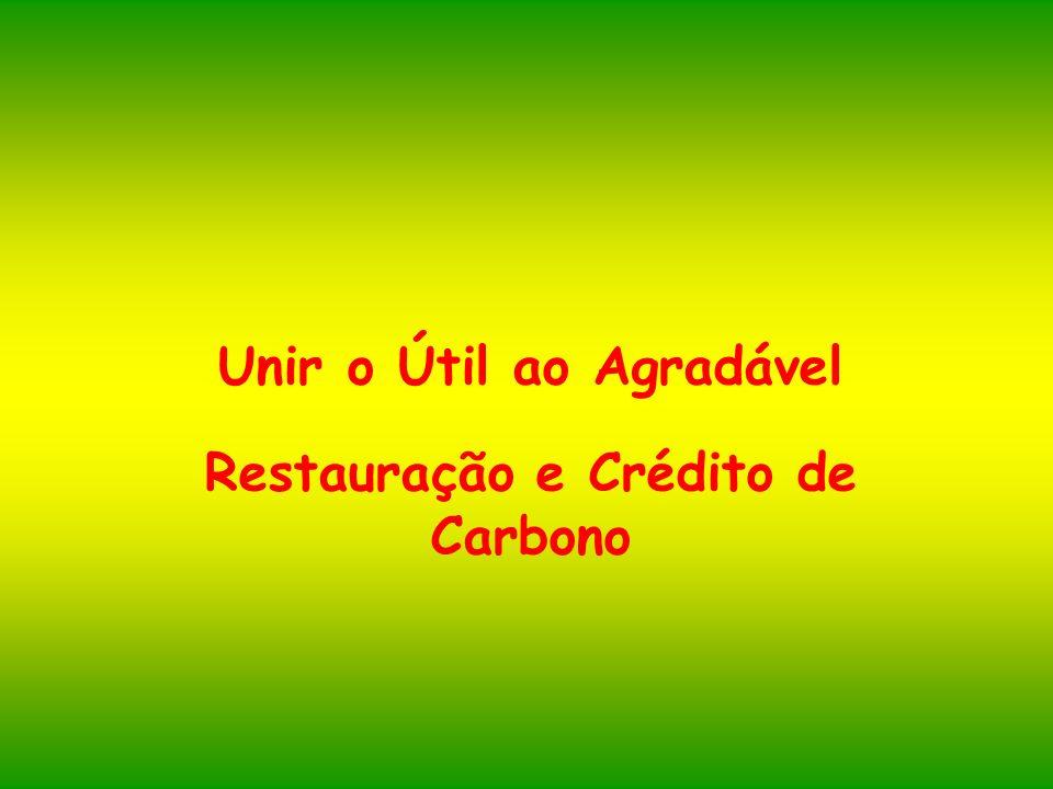 Unir o Útil ao Agradável Restauração e Crédito de Carbono