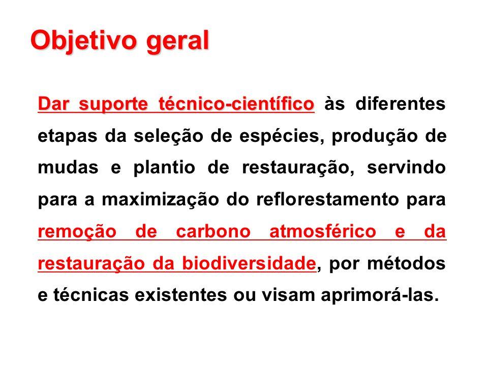 Dar suporte técnico-científico Dar suporte técnico-científico às diferentes etapas da seleção de espécies, produção de mudas e plantio de restauração,