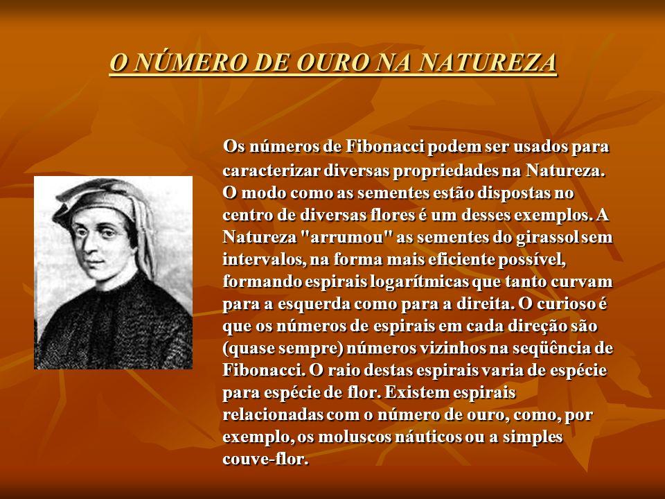 O NÚMERO DE OURO NA NATUREZA O NÚMERO DE OURO NA NATUREZA Os números de Fibonacci podem ser usados para caracterizar diversas propriedades na Natureza.