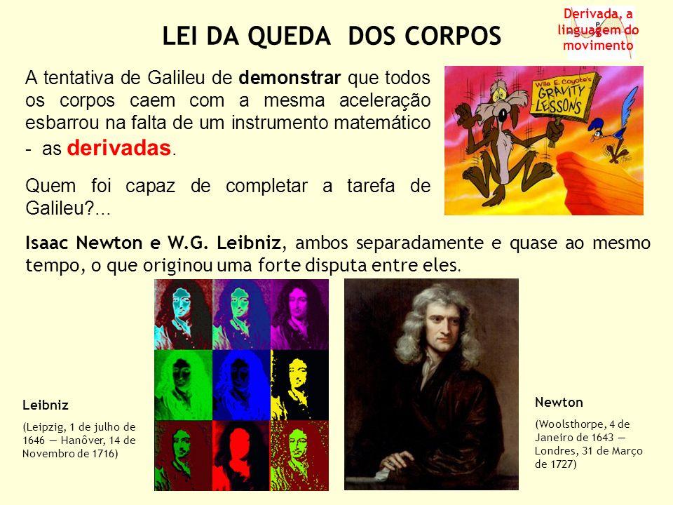 ( ) O despeito de Newton (1642 – 1727) devido a algumas críticas desfavoráveis levou-o a manter em segredo durante 30 anos, sem publicá-las, as suas descobertas relativas ao Cálculo Diferencial e Integral.