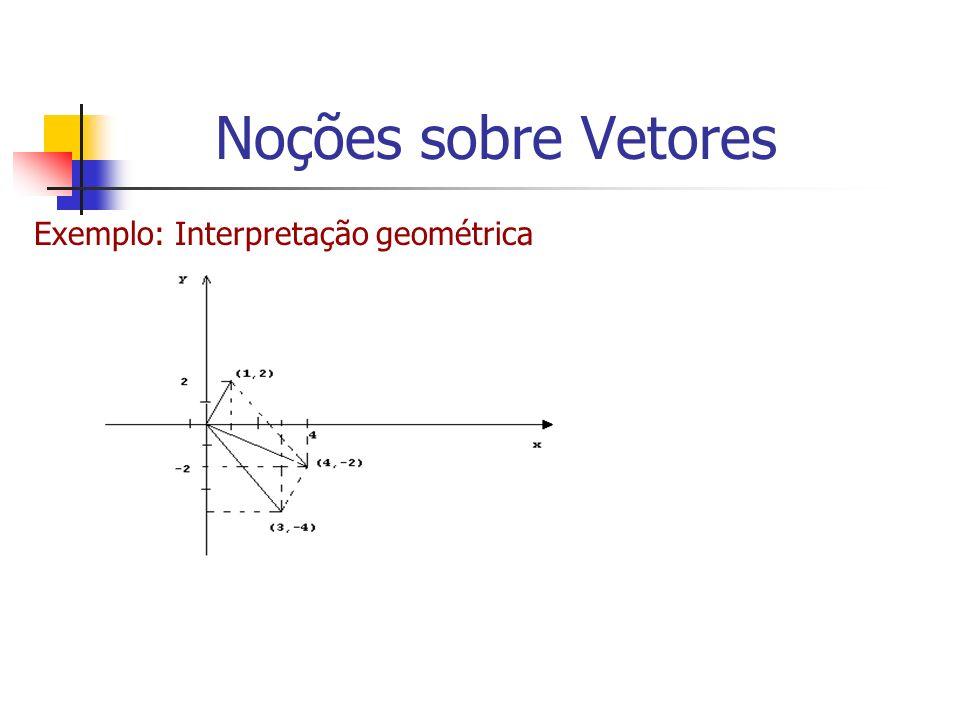 Exemplo: Interpretação geométrica Noções sobre Vetores