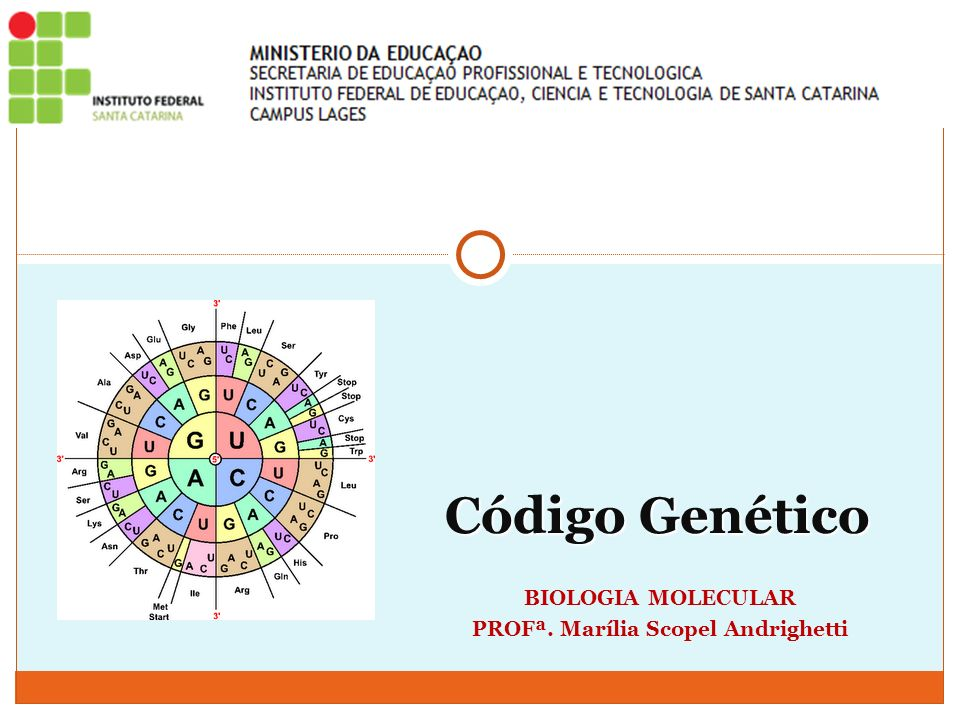 É a relação entre a sequência de bases no DNA e a sequência correspondente de aminoácidos, que formarão as proteínas; códons O código genético encontra-se na forma de triplets, denominados códons; Um códon, corresponde a um aminoácido: