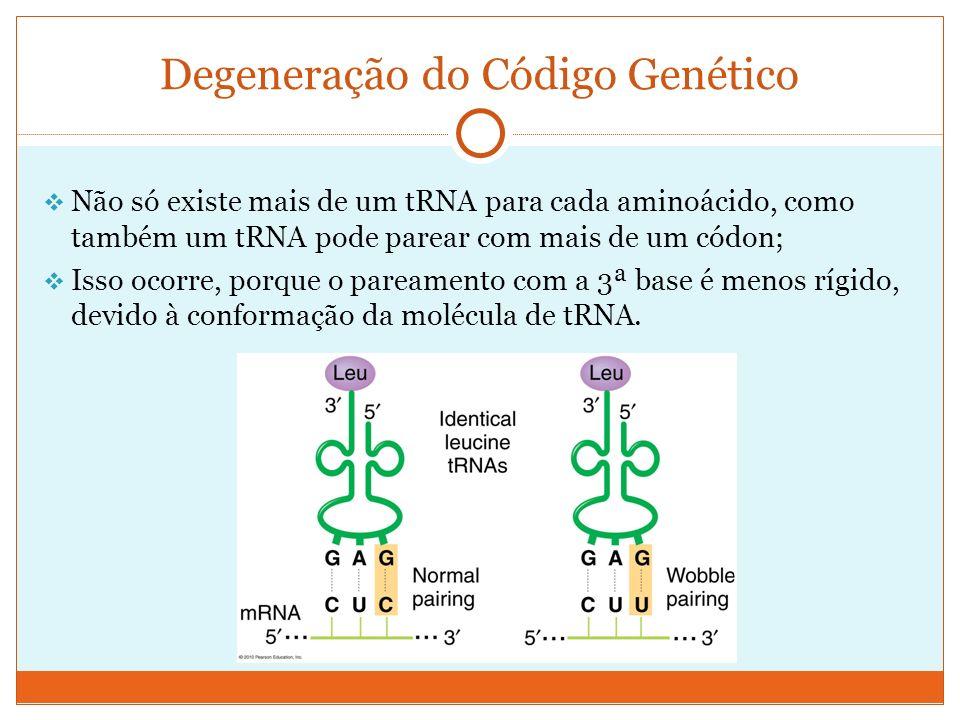 Não só existe mais de um tRNA para cada aminoácido, como também um tRNA pode parear com mais de um códon; Isso ocorre, porque o pareamento com a 3ª ba