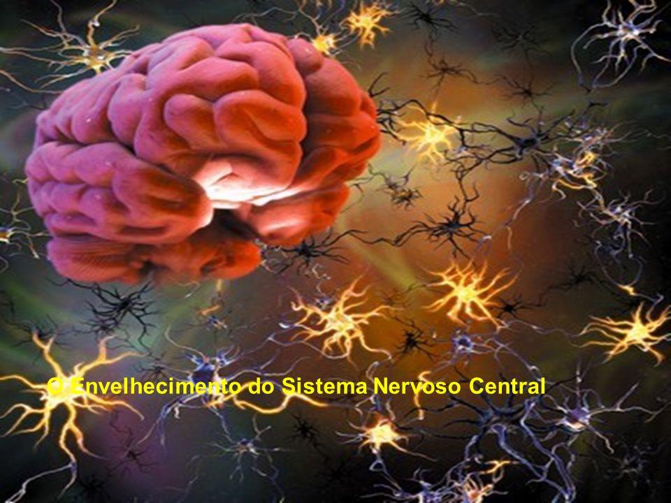 O Envelhecimento do Sistema Nervoso Central