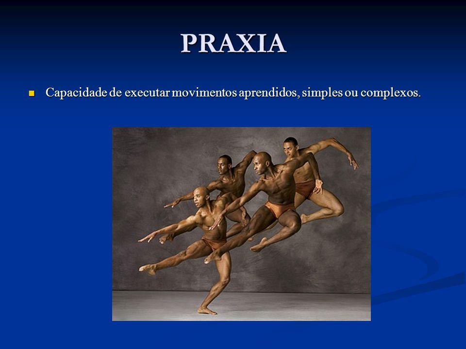 PRAXIA Capacidade de executar movimentos aprendidos, simples ou complexos. Capacidade de executar movimentos aprendidos, simples ou complexos.