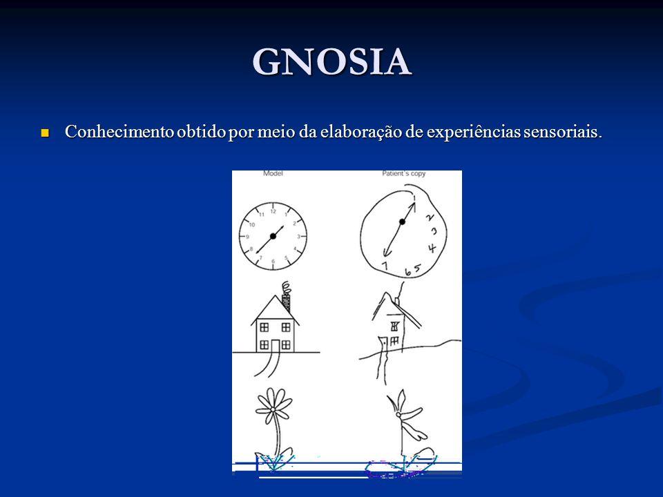 GNOSIA Conhecimento obtido por meio da elaboração de experiências sensoriais. Conhecimento obtido por meio da elaboração de experiências sensoriais.