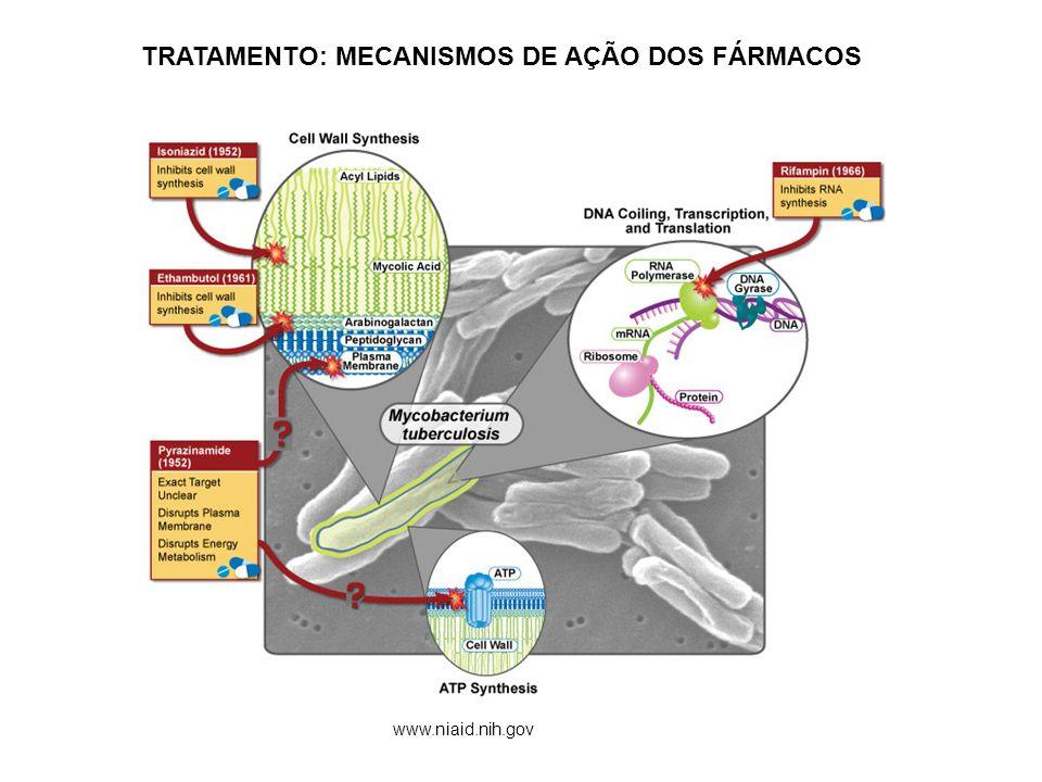 TRATAMENTO: MECANISMOS DE AÇÃO DOS FÁRMACOS www.niaid.nih.gov
