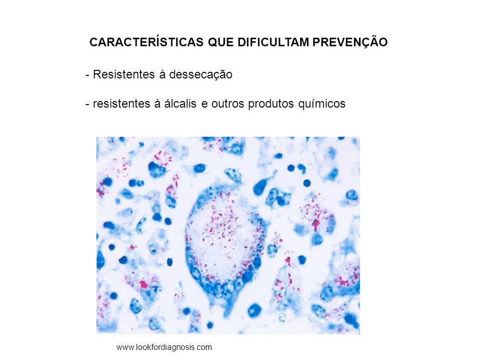 CARACTERÍSTICAS QUE DIFICULTAM PREVENÇÃO - Resistentes à dessecação - resistentes à álcalis e outros produtos químicos www.lookfordiagnosis.com
