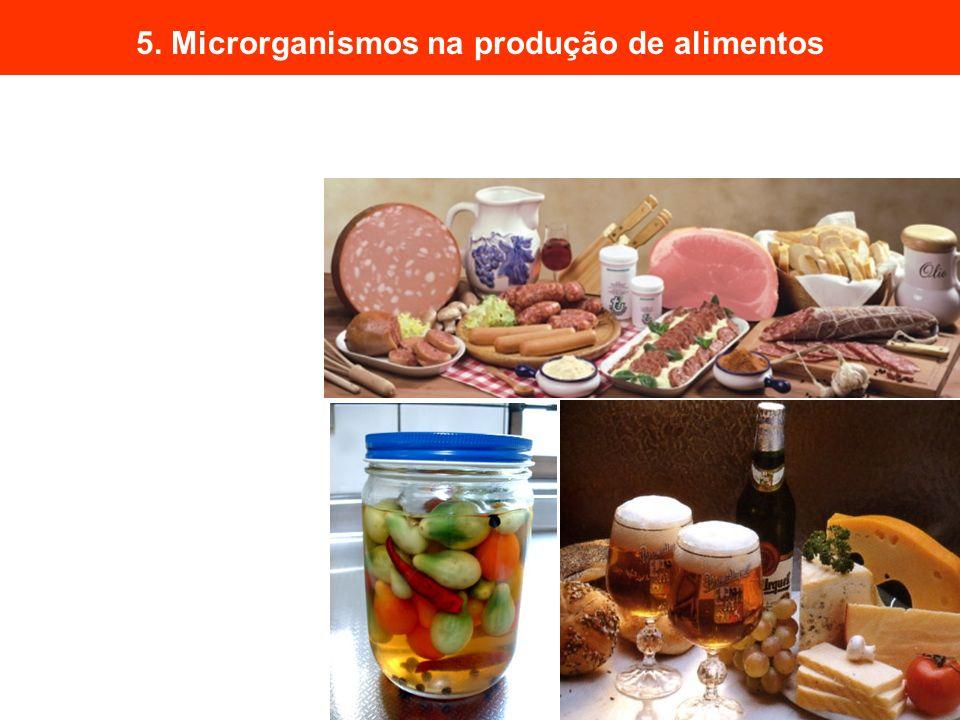 5. Microrganismos na produção de alimentos