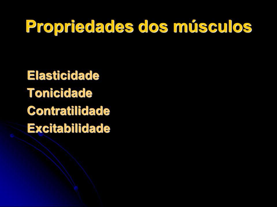 Propriedades dos músculos Elasticidade Elasticidade Tonicidade Tonicidade Contratilidade Contratilidade Excitabilidade Excitabilidade