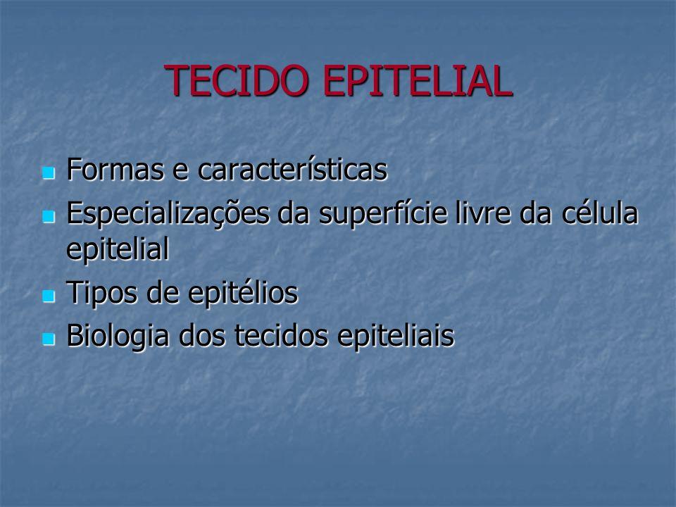 TECIDO EPITELIAL Formas e características Formas e características Especializações da superfície livre da célula epitelial Especializações da superfíc