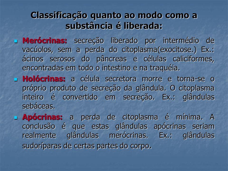 Classificação quanto ao modo como a substância é liberada: Merócrinas: secreção liberado por intermédio de vacúolos, sem a perda do citoplasma(exocito