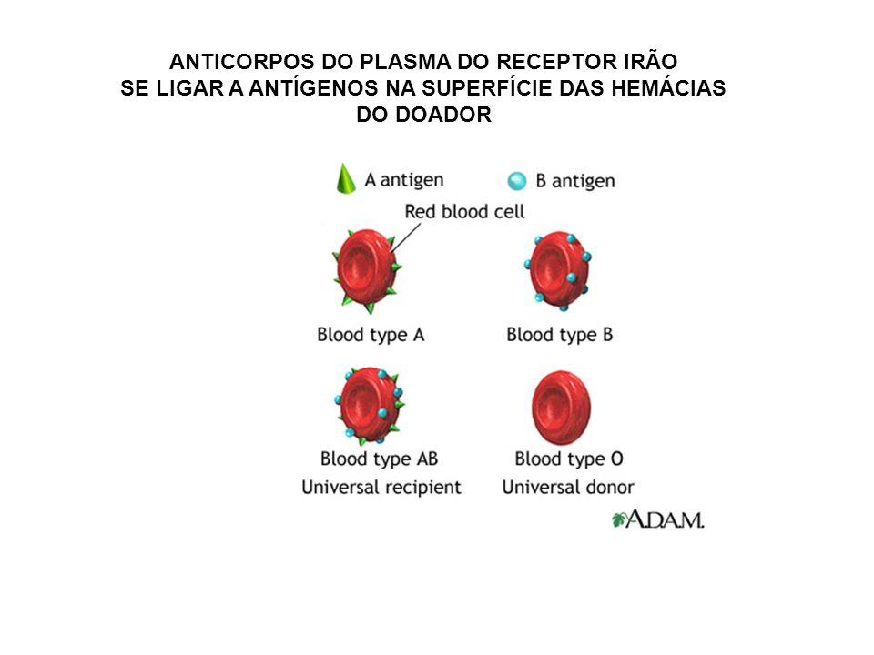 ANTICORPOS DO PLASMA DO RECEPTOR IRÃO SE LIGAR A ANTÍGENOS NA SUPERFÍCIE DAS HEMÁCIAS DO DOADOR