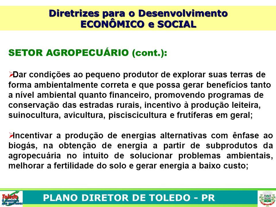 PLANO DIRETOR DE TOLEDO - PR Diretrizes para o Desenvolvimento ECONÔMICO e SOCIAL SETOR AGROPECUÁRIO (cont.): Dar condições ao pequeno produtor de exp