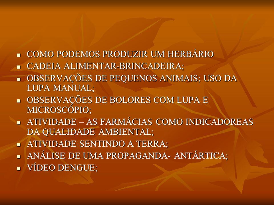 REFERÊNCIAS BIBLIOGRÁFICAS CURRÍCULO BÁSICO CURRÍCULO BÁSICO DIAS, GENIBALDO FREIRE,ATIVIDADES INTERDISCIPLINARES DE EDUCAÇÃO AMBIENTAL ;SÃO PAULO : GAIA,2006 DIAS, GENIBALDO FREIRE,ATIVIDADES INTERDISCIPLINARES DE EDUCAÇÃO AMBIENTAL ;SÃO PAULO : GAIA,2006 CIÊNCIAS PARA VOCÊ;CONHECER E GOSTAR; 3º SÉRIE CIÊNCIAS PARA VOCÊ;CONHECER E GOSTAR; 3º SÉRIE O GRANDE ATLAS DE CIÊNCIAS; ED.