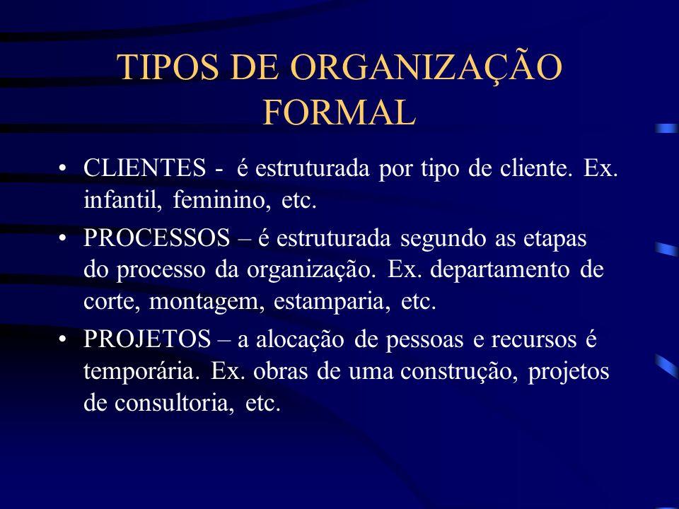 TIPOS DE ORGANIZAÇÃO FORMAL TERRITORIAL – é estruturada por região ou localização geográfica; geralmente é usada quando a empresa é dispersa. Ex. Regi
