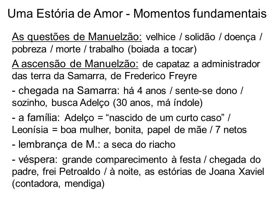 As questões de Manuelzão: velhice / solidão / doença / pobreza / morte / trabalho (boiada a tocar) A ascensão de Manuelzão: de capataz a administrador