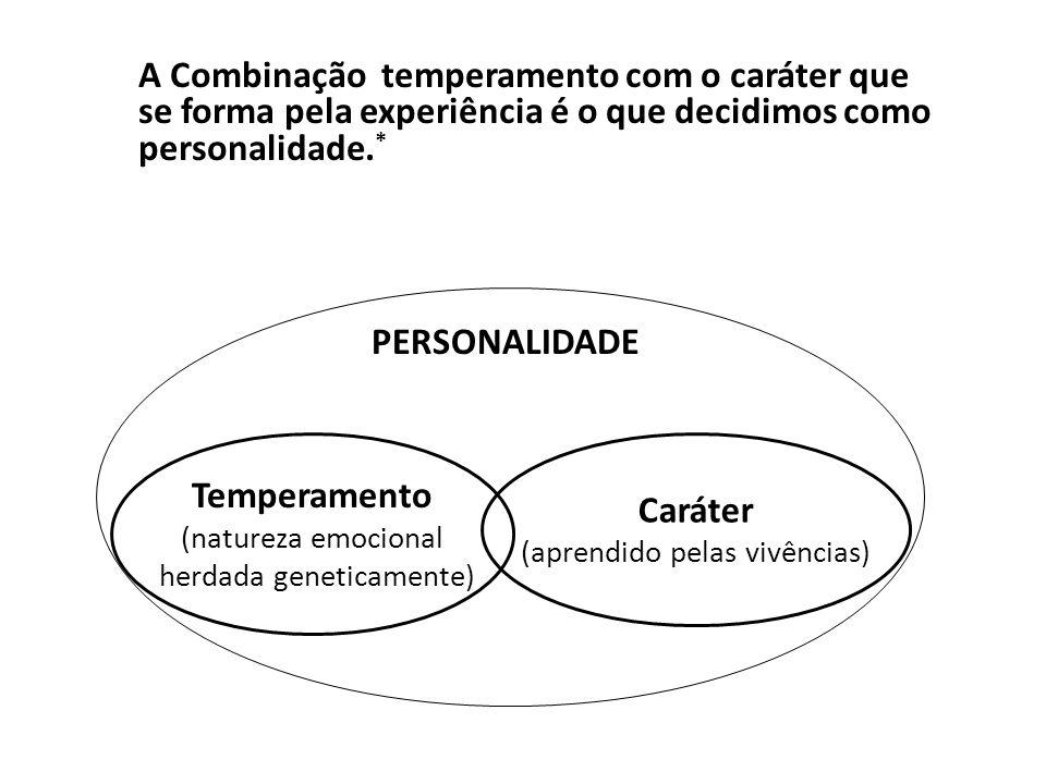 A Combinação temperamento com o caráter que se forma pela experiência é o que decidimos como personalidade.