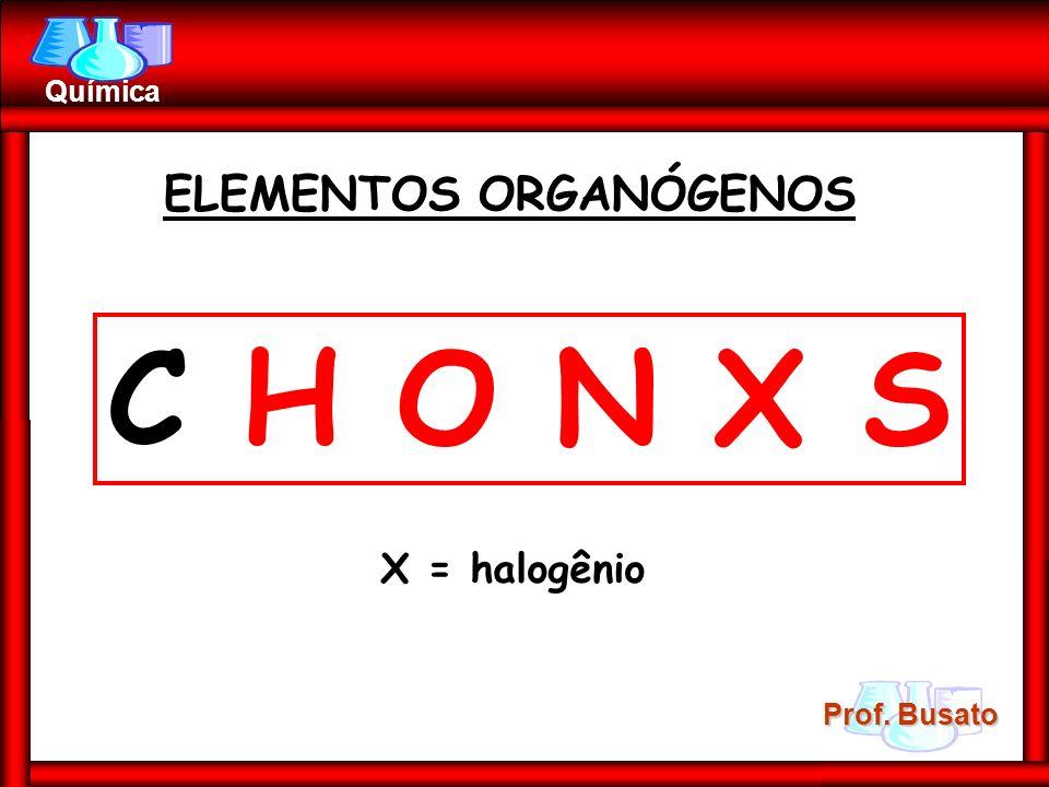 Prof. Busato Química ELEMENTOS ORGANÓGENOS C H O N X S X = halogênio