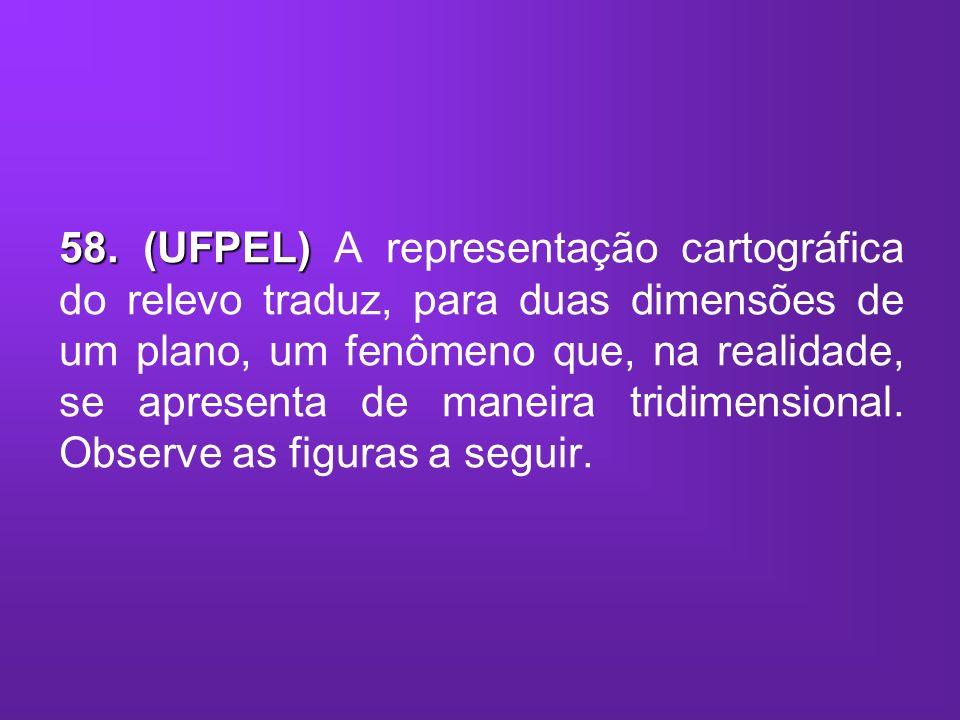 58. (UFPEL) 58. (UFPEL) A representação cartográfica do relevo traduz, para duas dimensões de um plano, um fenômeno que, na realidade, se apresenta de