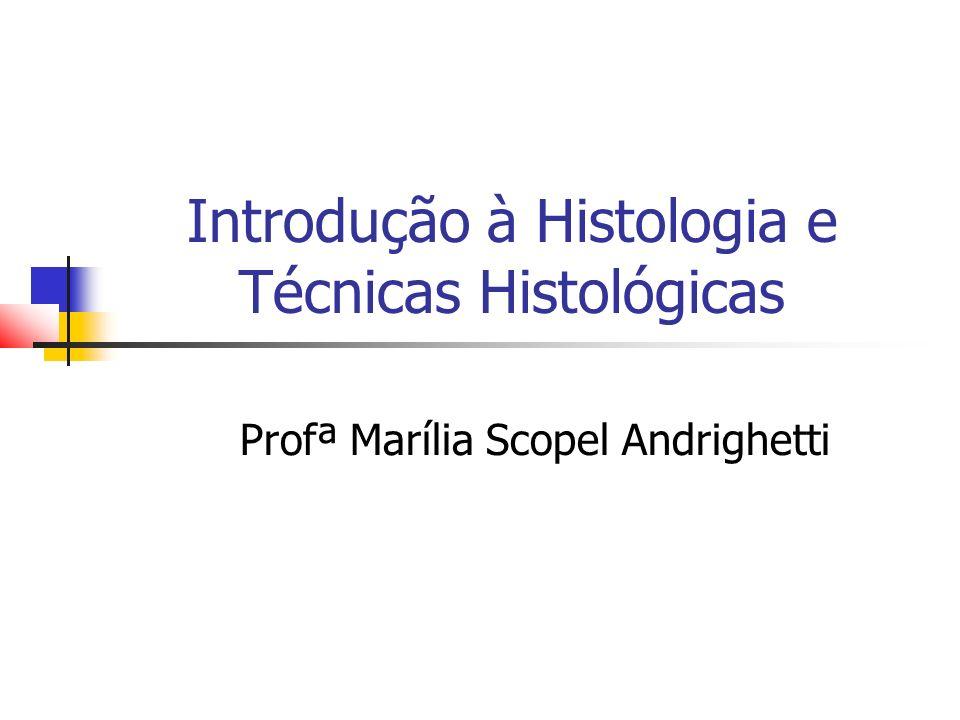 Introdução à Histologia e Técnicas Histológicas Profª Marília Scopel Andrighetti
