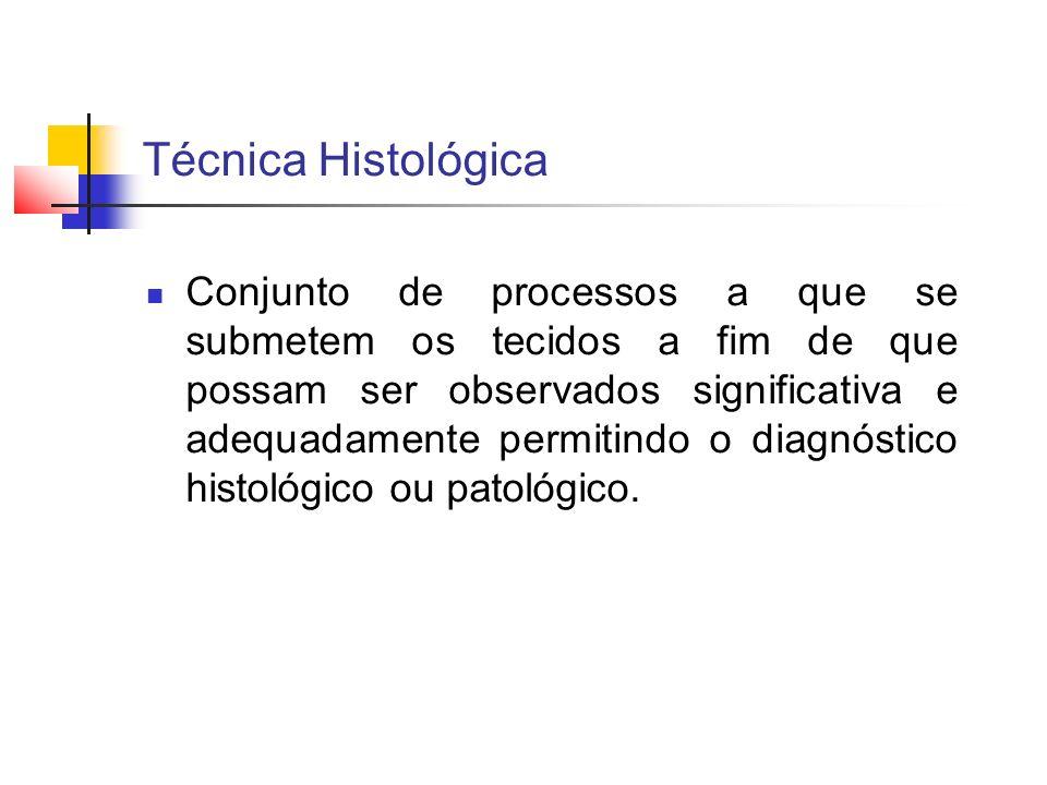 Técnica Histológica Conjunto de processos a que se submetem os tecidos a fim de que possam ser observados significativa e adequadamente permitindo o d