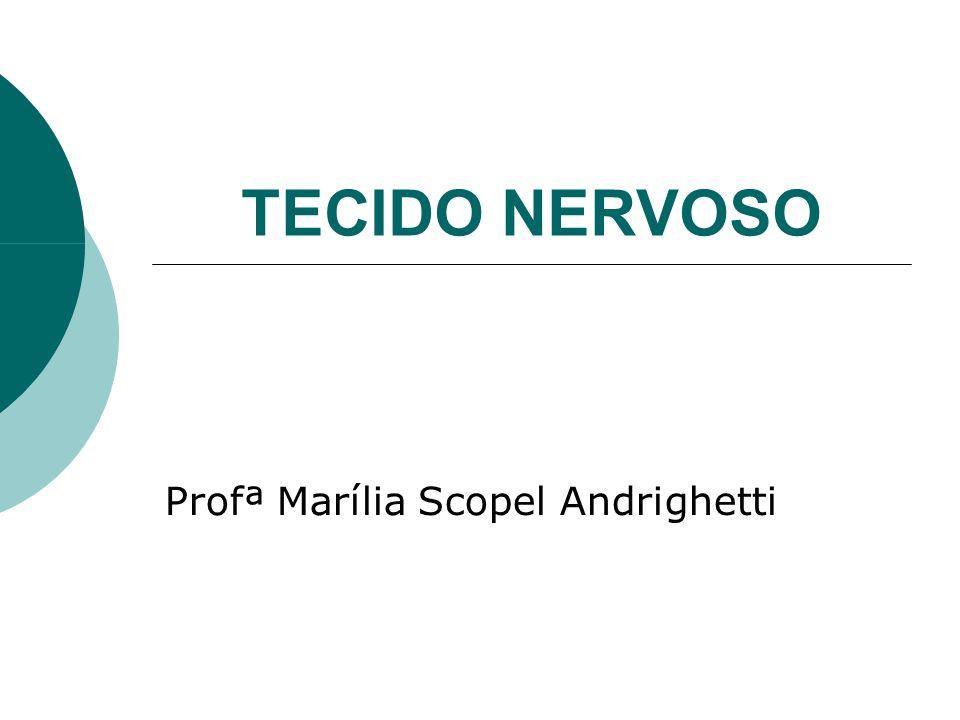 TECIDO NERVOSO Profª Marília Scopel Andrighetti