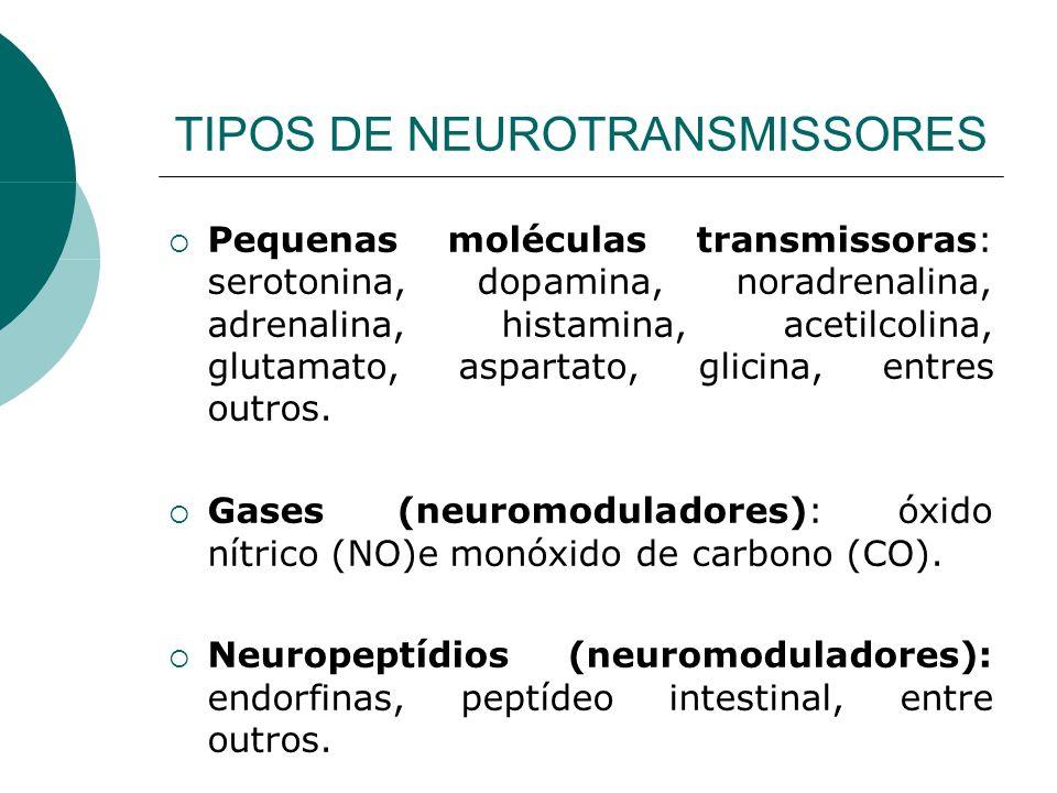 TIPOS DE NEUROTRANSMISSORES Pequenas moléculas transmissoras: serotonina, dopamina, noradrenalina, adrenalina, histamina, acetilcolina, glutamato, asp