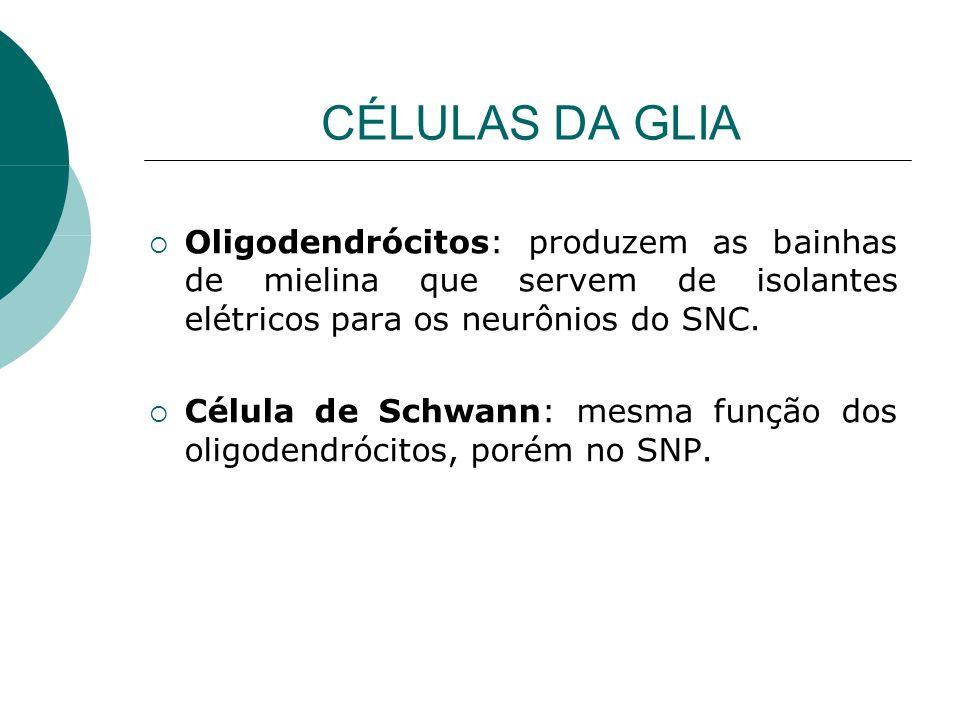 CÉLULAS DA GLIA Oligodendrócitos: produzem as bainhas de mielina que servem de isolantes elétricos para os neurônios do SNC. Célula de Schwann: mesma