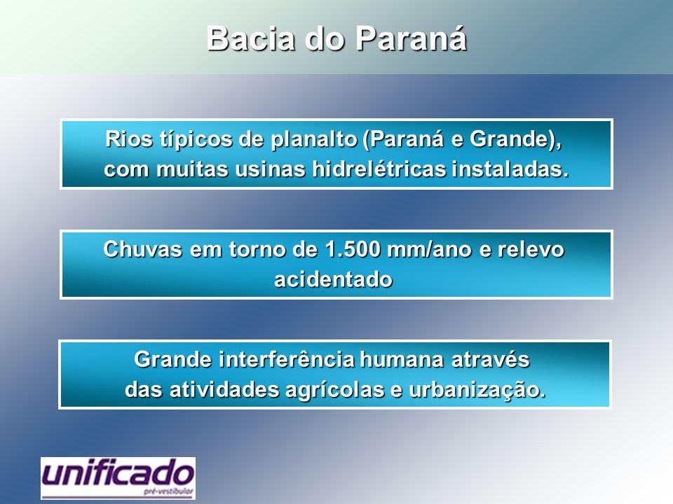 Rios típicos de planalto (Paraná e Grande), com muitas usinas hidrelétricas instaladas. Chuvas em torno de 1.500 mm/ano e relevo acidentado Grande int