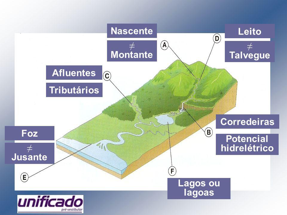 Montante Nascente Corredeiras Potencial hidrelétrico Afluentes Tributários Leito Foz Talvegue Jusante Lagos ou lagoas