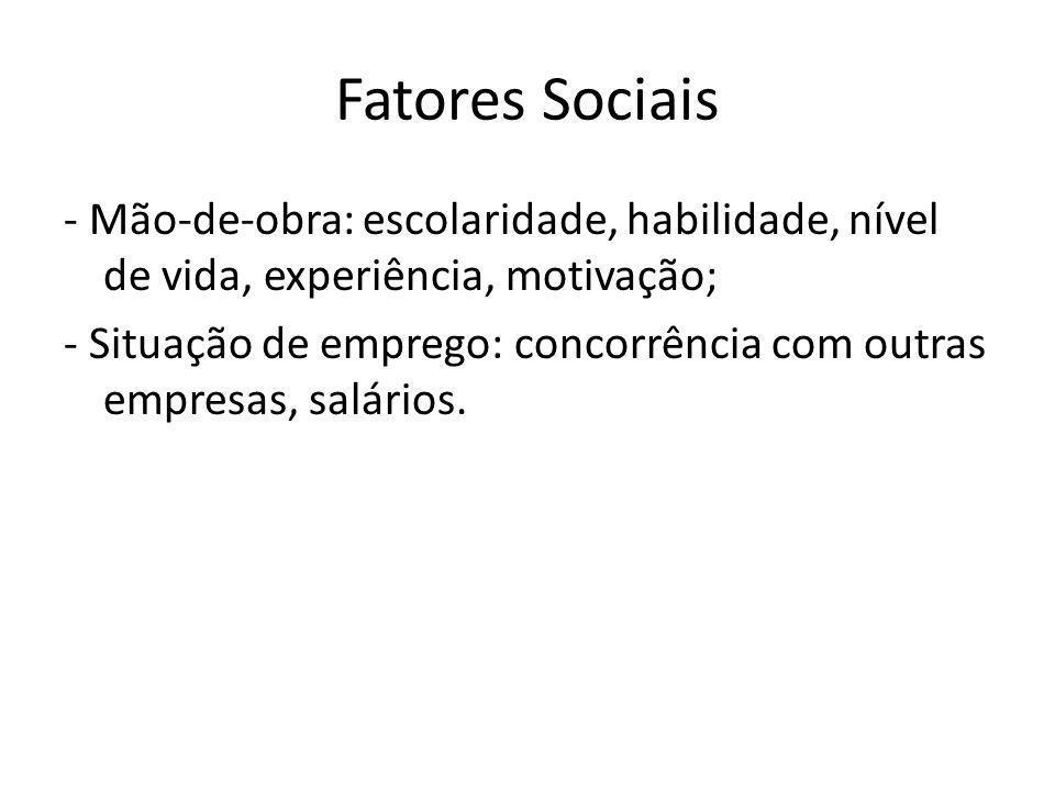 Fatores Sociais - Mão-de-obra: escolaridade, habilidade, nível de vida, experiência, motivação; - Situação de emprego: concorrência com outras empresa