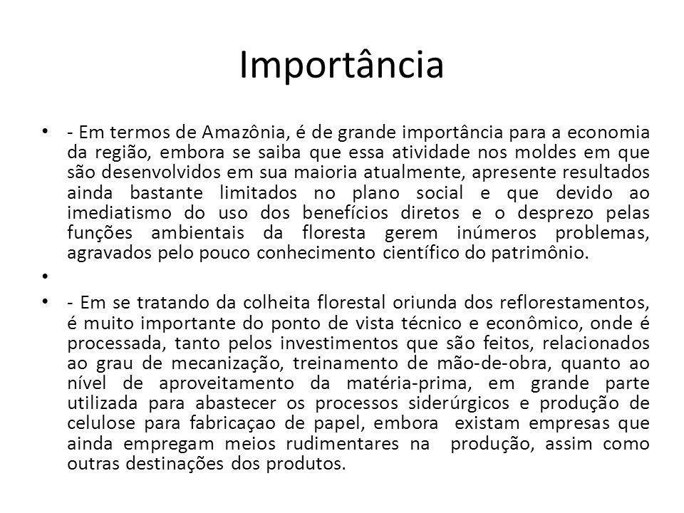 - Em termos de Amazônia, é de grande importância para a economia da região, embora se saiba que essa atividade nos moldes em que são desenvolvidos em