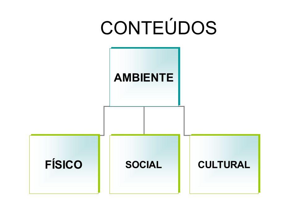 CONTEÚDOS AMBIENTE FÍSICO SOCIAL CULTURAL