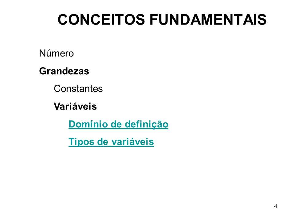 4 CONCEITOS FUNDAMENTAIS Número Grandezas Constantes Variáveis Domínio de definição Tipos de variáveis