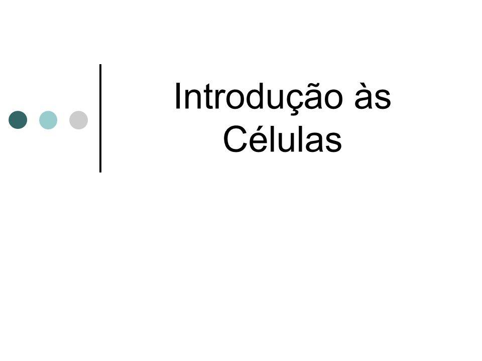 Célula Procariótica SEXUADA 1.