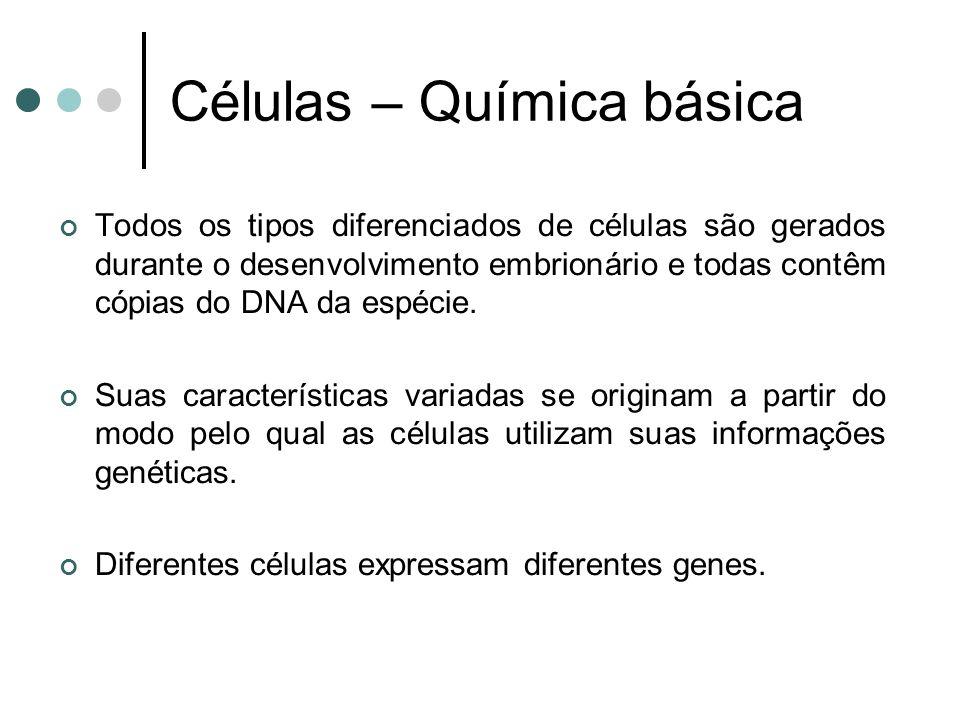 Células – Química básica Todos os tipos diferenciados de células são gerados durante o desenvolvimento embrionário e todas contêm cópias do DNA da espécie.