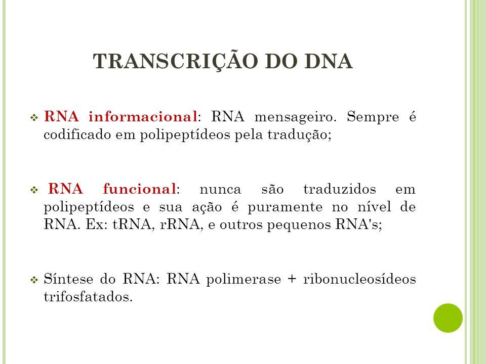 TRANSCRIÇÃO DO DNA RNA informacional : RNA mensageiro. Sempre é codificado em polipeptídeos pela tradução; RNA funcional : nunca são traduzidos em pol