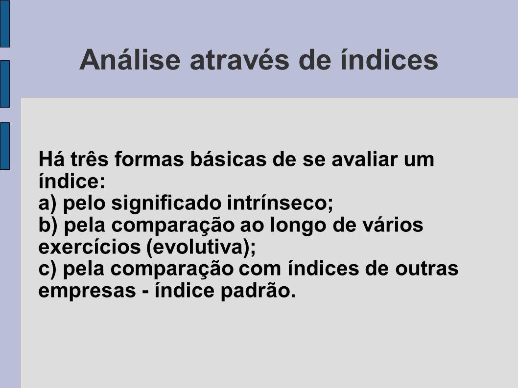 Análise através de índices Há três formas básicas de se avaliar um índice: a) pelo significado intrínseco; b) pela comparação ao longo de vários exerc