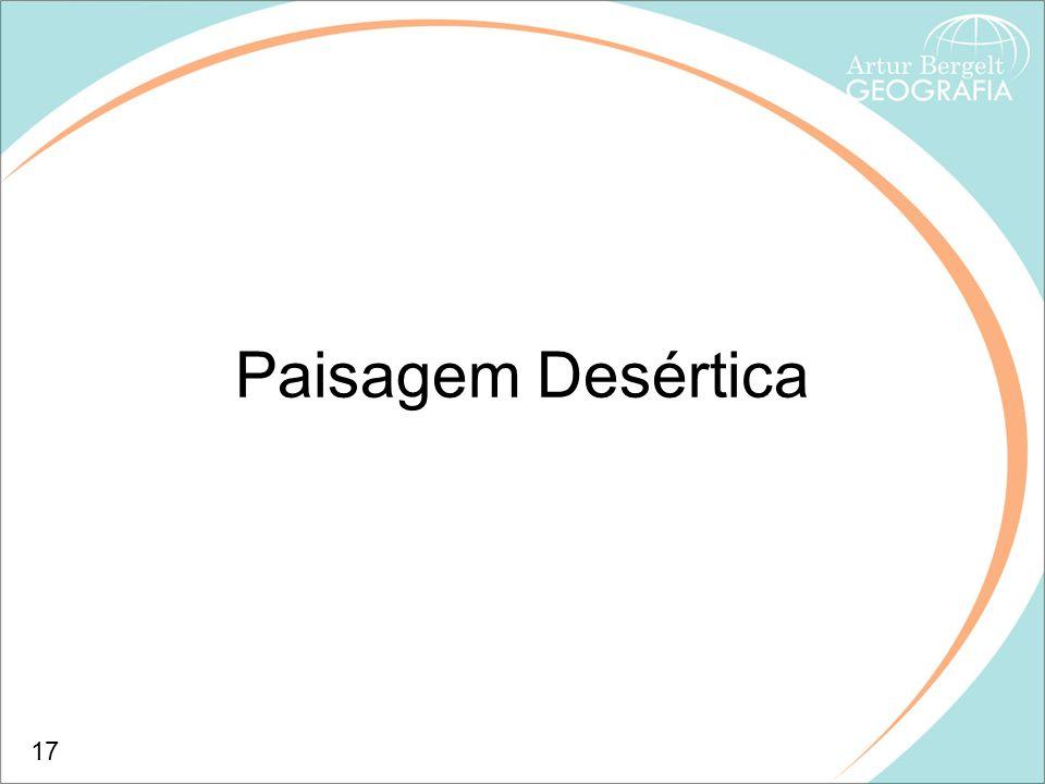 Paisagem Desértica 17