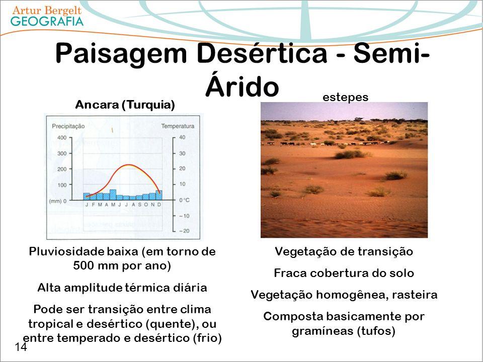 Paisagem Desértica - Semi- Árido Ancara (Turquia) Pluviosidade baixa (em torno de 500 mm por ano) Alta amplitude térmica diária Pode ser transição ent