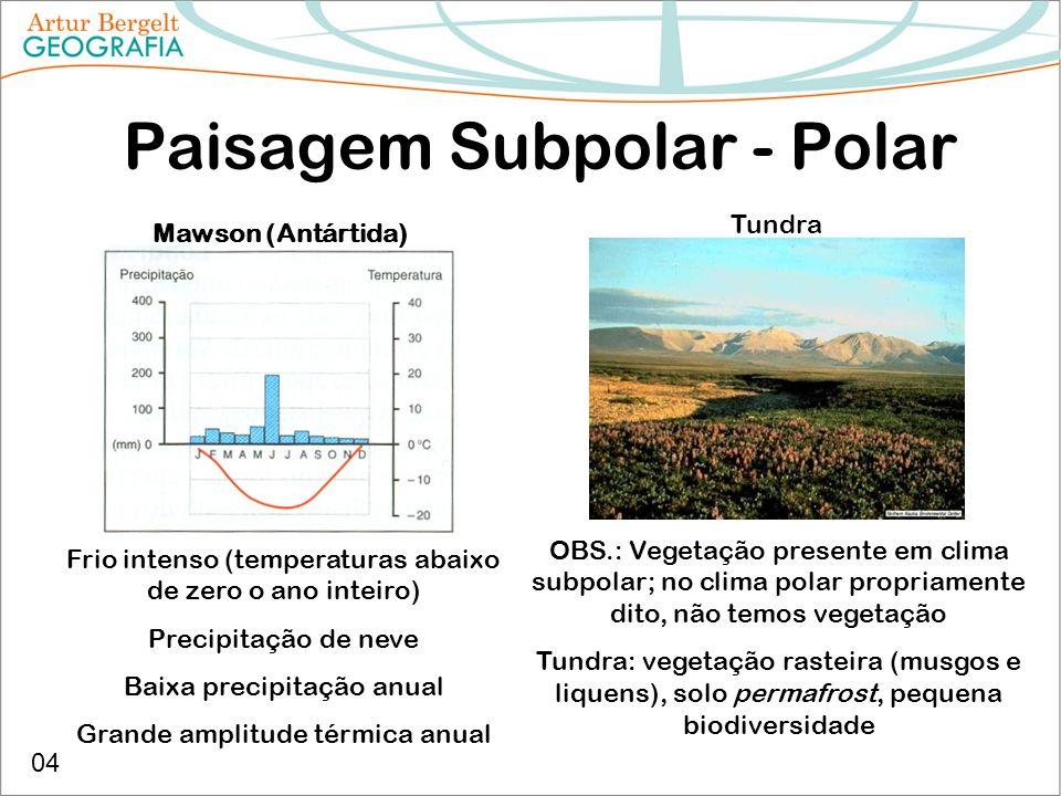 Paisagem Subpolar - Polar Mawson (Antártida) Tundra Frio intenso (temperaturas abaixo de zero o ano inteiro) Precipitação de neve Baixa precipitação a